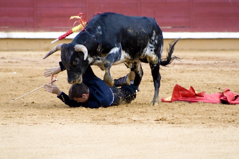 Abolition of Bullfighting in Catalonia, Spain