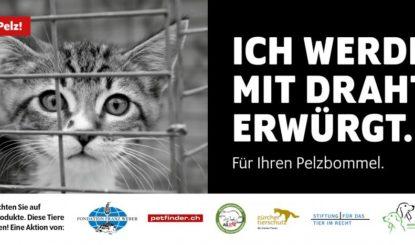Gemeinsame Kampagne gegen Pelzprodukte lanciert