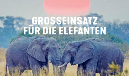 Das neue Journal Franz Weber ist online!