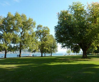 Non au téléphérique au-dessus du Lac de Zürich !