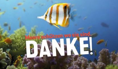 NOzeanium: Wir sagen DANKE!