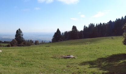 Parc éolien « Sur Grati » (arrêt du Tribunal cantonal du 31.10.2019) – Les organisations de protection de la nature très inquiètes