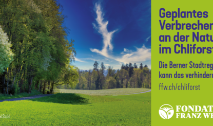 Communiqué aux médias : campagne contre la construction d'un atelier ferroviaire en pleine campagne - La Municipalité de Berne peut éviter cette destruction annoncée