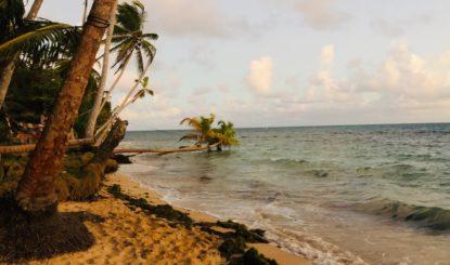 Gran SeaFlower: la FFW au chevet des Caraïbes