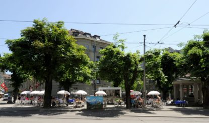 Historic Horse Chestnut Avenue at Hirschengraben in Bern Threatened to Be Destroyed!