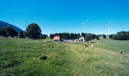 Communiqué aux médias: La problématique de la construction de parcs éoliens en zone naturelle reste entière