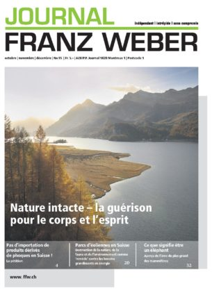 Journal Franz Weber 94